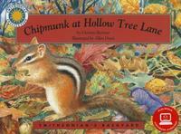 Chipmunk at Hollow Tree Lane