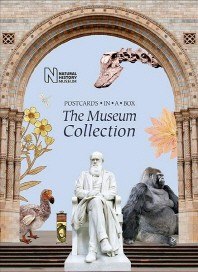 The Museum Collection: Postcards in a Box