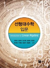 선형대수학 입문