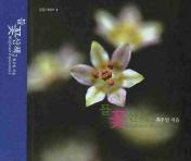 들꽃산책. 2