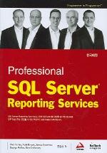 PROFESSIONAL SQL SERVER REPORTING SERVICES (한국어판)