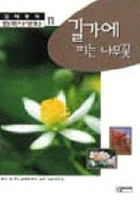 한국야생화 11