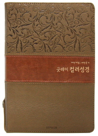 굿데이 컬러성경(중합본)(색인)(지퍼)(투톤브라운)(새찬송가)(개역개정)