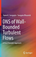 DNS of Wall-Bounded Turbulent Flows
