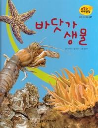 물에 사는 동물. 37: 바닷가 생물