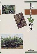 果樹園藝大百科8 ウメ