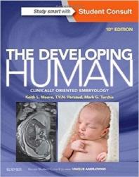 Developing Human