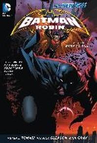 Batman and Robin Vol. 1