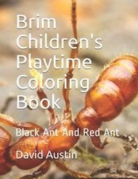Brim Children's Playtime Coloring Book
