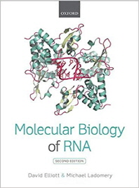 Molecular Biology of RNA