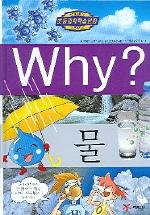 Why 물