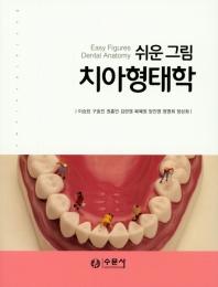 쉬운 그림 치아형태학