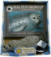 Seal Pup Grows Up