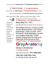 그레이아나토미 해부학의 제11권 2부 소화기 학 도해 그림책.Gray's Anatomy. XI. Splanchnology. 2. The Digestive Apparatus Figure Book,by Henry Gray