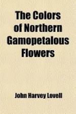 The Colors of Northern Gamopetalous Flowers (Volume 1)