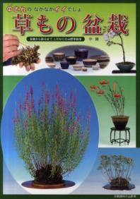 中さんのなかなかイイでしょ草もの盆栽 培養から飾るまでこだわりの山野草栽培