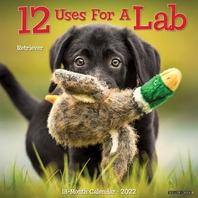 12 Uses for a Lab 2022 Wall Calendar (Labrador Retriever Dog Breed)