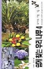 우리나무 4(도시나무-여름.가을)(쉽게 찾는)