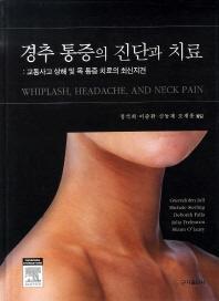 경추 통증의 진단과 치료