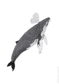 혹등고래 포스터(지관통 포장)