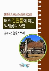 [왕릉으로 보는 조선왕조 500년] 태조 건원릉에 피는 억새꽃의 사연