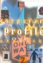 Corporate Profile Graphics 2