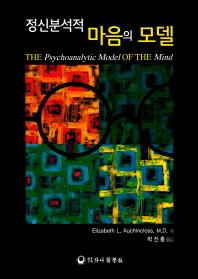 정신분석적 마음의 모델