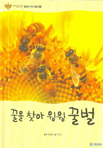 꿀을 찾아 윙윙 꿀벌