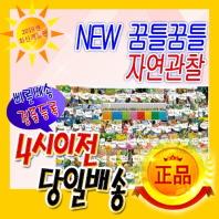[한국톨스토이] NEW 꿈틀꿈틀 자연관찰 (전84권)/ 씽씽펜별도/ 2020년 최신개정판