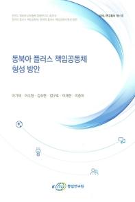 동북아 플러스 책임공동체 형성 방안