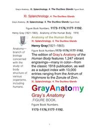 그레이아나토미 해부학의 제11권 4부 내분비기관 학 도해 그림책.Gray's Anatomy. XI. Splanchnology. 4. The Ductless Glandsl Apparatus Figure Book,by Henry Gray