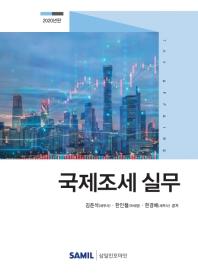 국제조세 실무(2020)