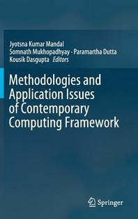Methodologies and Application Issues of Contemporary Computing Framework