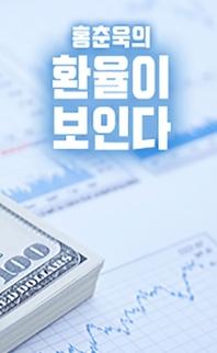 홍춘욱의 환율이 보인다: 환율 방향. 어떻게 예측할 것인가?