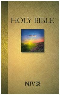 Holy Bible(NIV124050)
