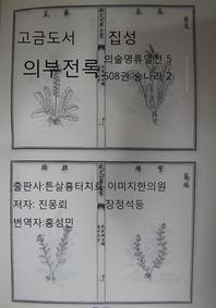 고금도서집성 의부전록 의술명류열전5 508권 송나라2