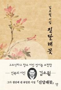 김소월 시집 진달래꽃(미니북)