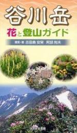 谷川岳花と登山ガイド
