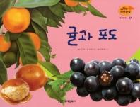 열매와 채소. 47: 귤과 포도