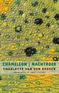 Chameleon / Nachtroer