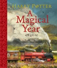 해리포터:마법같은 1년