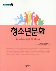 청소년 문화