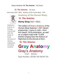 그레이아나토미 해부학의 제6권 동맥 책.Gray's Anatomy. VI. The Arteries . Text Book.by Henry Gray.
