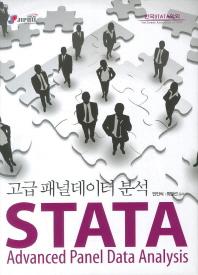 STATA 고급 패널데이터 분석