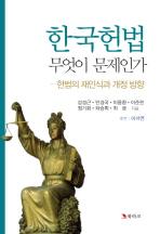 한국헌법 무엇이 문제인가