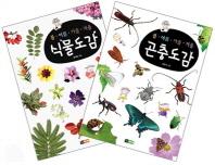봄 여름 가을 겨울 식물도감 곤충도감 세트