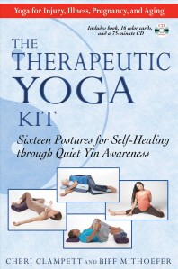 The Therapeutic Yoga Kit