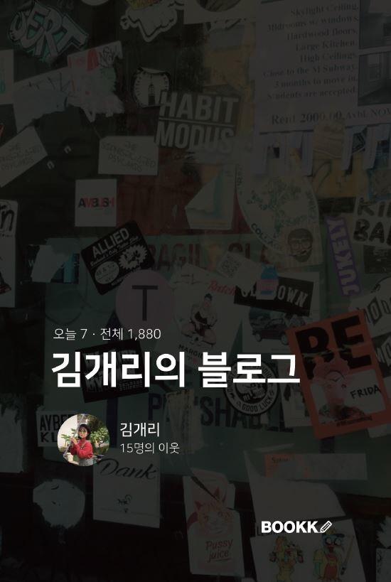 김개리의 블로그 (컬러판)