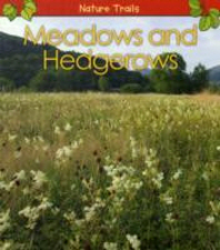 Meadows and Hedgerows