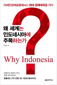 왜 세계는 인도네시아에 주목하는가